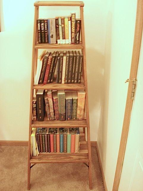 Old Ladder Bookshelf