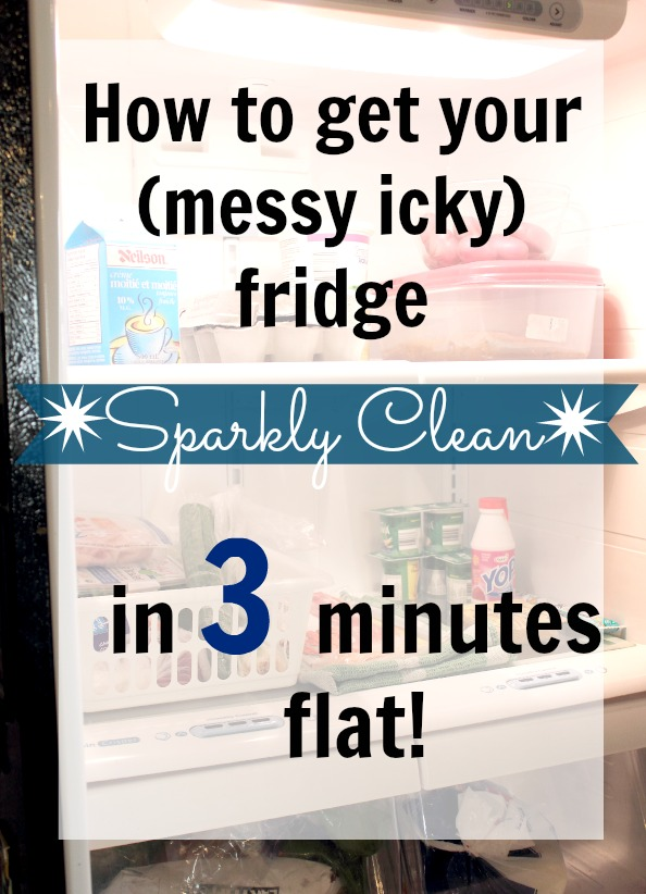 DIY Fridge Cleaning