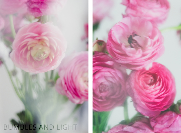Two Bright Photo Tutorial Ideas