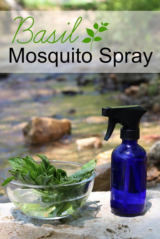 basil-mosquito-spray